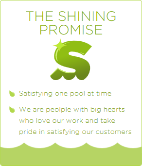 the-shining-promise